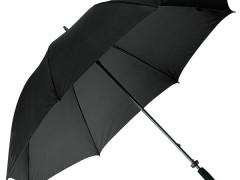 Titta närmare på paraplyet Monsun